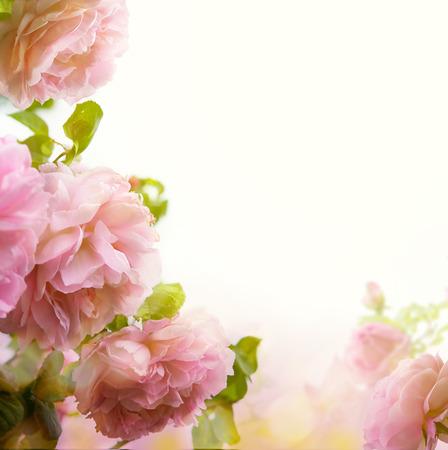 美しいパステル花柄ボーダー背景