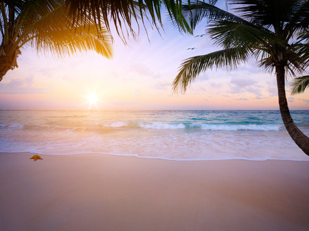 sunrise over the tropical beach photo