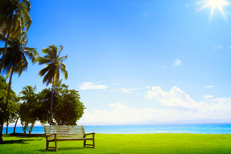 Desert tropical island with palm tree and chaise lounge photo