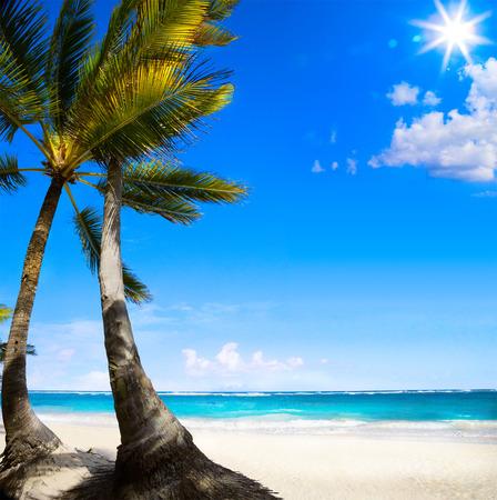 Caribbean tropical beach