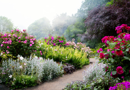 Kunstbloemen in de ochtend in een Engels park