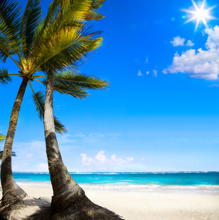 Art Untouched Caribbean tropical beach  photo