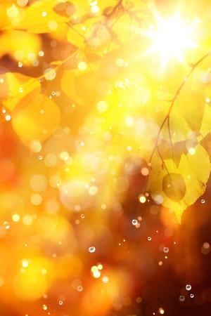 dorado: otoño fondo
