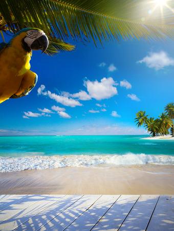 uninhabited: Art  beautiful Caribbean uninhabited tropical sea beach