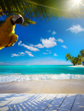 onbewoond: Art prachtige Caribische onbewoonde tropische zee strand