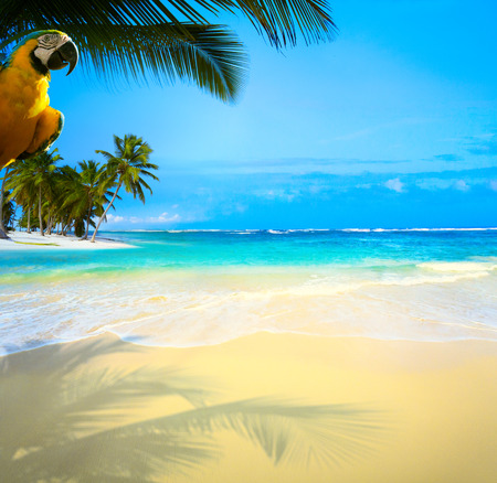 beautiful Caribbean uninhabited tropical sea beach Stock Photo