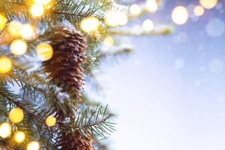 Árbol de Navidad en luz de la Navidad Foto de archivo