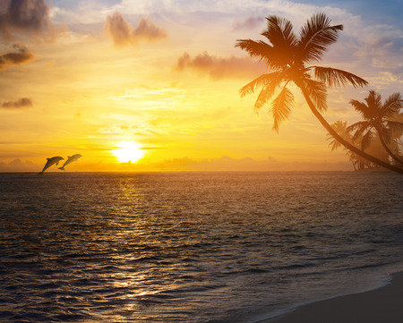 Art Beautiful sunrise over the tropical beach Reklamní fotografie - 36452781