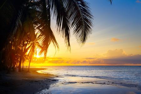Arte Hermoso amanecer en la playa tropical Foto de archivo