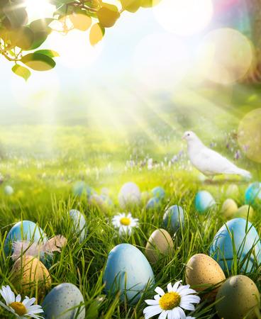 pigeon egg: art easter eggs on spring field