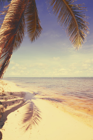Art  beautiful retro seaside view  background photo