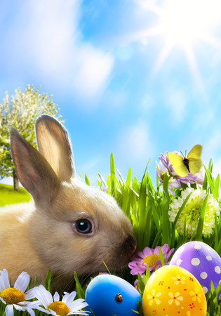 cute bunny: art Little Easter bunny and Easter eggs on green grass