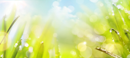 light green: abstract art spring Nature background