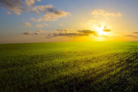 fall sunrise: spring field, sunrise and blue sky Stock Photo