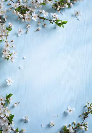 borde de flores: arte Primavera fondo frontera floral con flores blancas