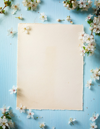 art Spring border background with spring flowers photo