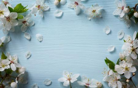 Art Printemps fond frontière floral avec des fleurs blanches Banque d'images - 39582536
