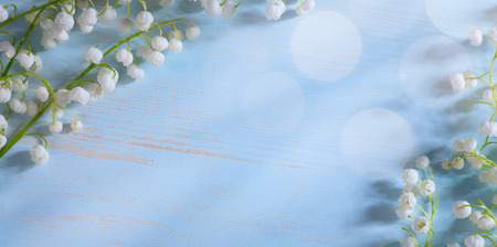 lily of the valley: Beautiful lily valley Flowers Border Stock Photo