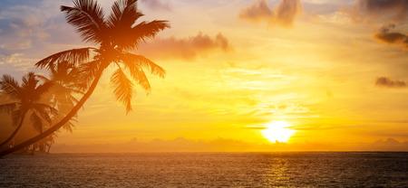 Art Krásný východ slunce nad tropickou pláž Reklamní fotografie