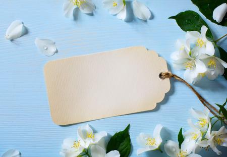 jasmine flower: art Beautiful jasmine Flowers Border