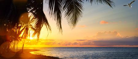 熱帯のビーチのアート美しい日の出