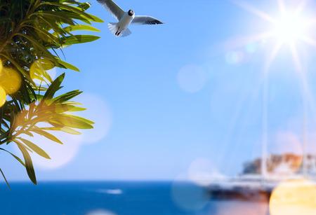夏旅行の背景 写真素材