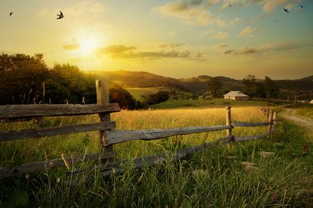 пейзаж: искусство сельский пейзаж. поле травы и