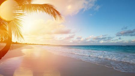 浪漫: 藝術美麗的日出的熱帶海灘