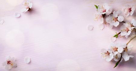 � spring: arte floreciente de la primavera; flores de primavera en el fondo de madera