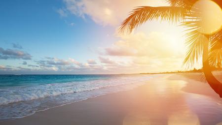 férias: Art Bonito nascer do sol sobre a praia tropical