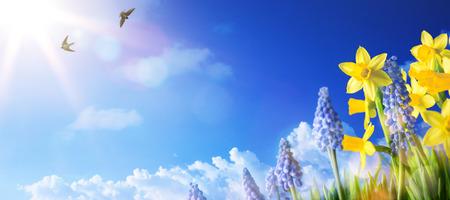 landschaft: Ostern Hintergrund mit frischen Frühlingsblumen Lizenzfreie Bilder