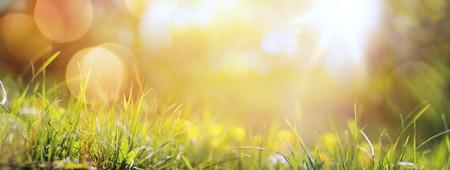 アート抽象春背景や新鮮な草と夏の背景
