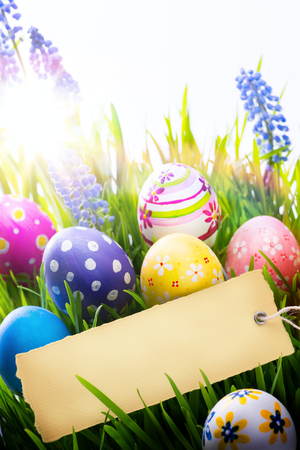 Easter Background with easter eggs and spring flowers