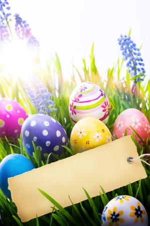 huevos de pascua: Fondo de Pascua con los huevos de Pascua y flores de primavera