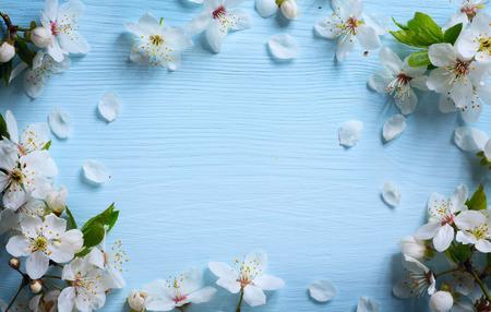 white blossom: art Spring floral  background with white blossom