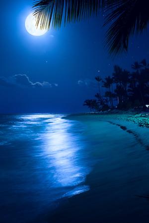 アート月夜熱帯海ビーチ;ザ パームス リゾートでの休暇