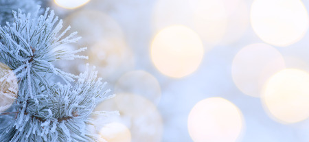 Christmas tree light; Blue winter Christmas Landscape