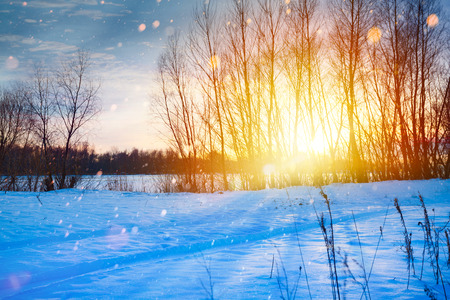 snowcovered: Snowy winter Christmas Landscape; sunset over the snow-covered meadow Stock Photo