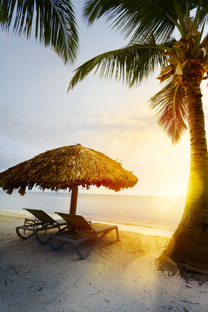 Summer tropical Beach; Peaceful vacation background