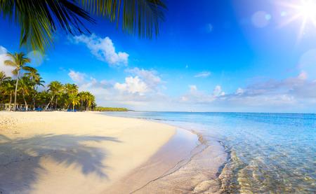 여름 열대 해변; 평화로운 휴가 배경