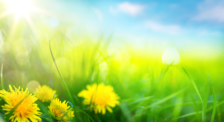 art abstract spring background or summer background with fresh grass Reklamní fotografie - 70762433