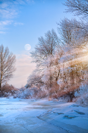 beautiful winter nature view; winter landscape On A Hoar Frost