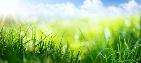 arte fundo da mola abstrata ou fundo do verão com grama fresca