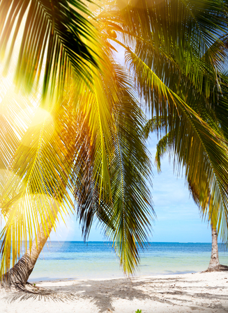 art Peaceful vacation background; Summer tropical Beach;