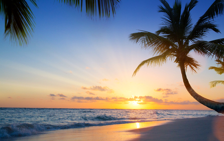 Art Beautiful sunset over the tropical beach