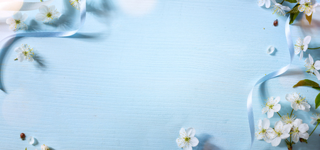 Spring floral background with white blossom; Easter flower  Stock Photo