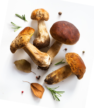 fresh forest mushroom;  Italian cooking recipes background 写真素材