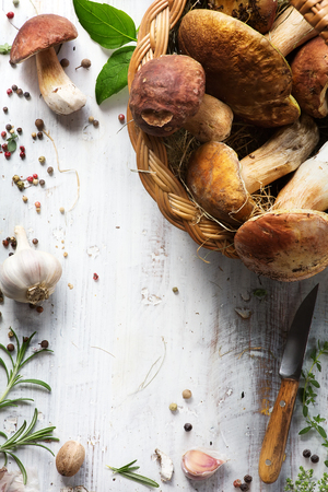 fresh forest mushroom;  Italian cooking recipes background Stock Photo