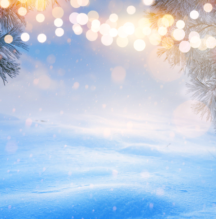 Christmas tree light; Blue Snowy winter Christmas Landscape Reklamní fotografie