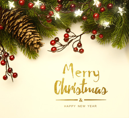 Christmas tree light; Christmas Background With  Fir Branch Reklamní fotografie